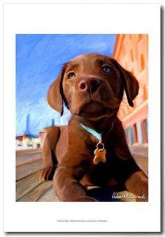 Chocolate Labrador Retriever Puppy. Artwork by Robert Mcclintock #labradors #dogs #puppy #puppies