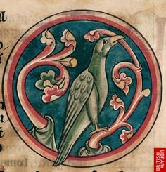 Detail of a miniature of a phoenix biting a branch.   Origin:England, S. (Salisbury?)