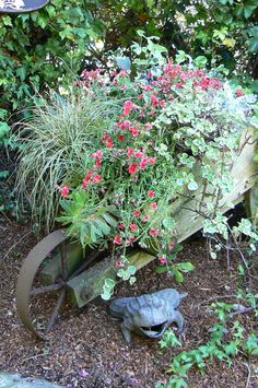 Planted wheelbarrow Container Plants, Container Gardening, Wheelbarrow Planter, Garden Planters, Farmer, Modern Design, Things To Come, Yard, Landscape