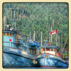 A Postcard from Vancouver Island: Cowichan Valley - Wooden ships at Maple Bay A late September paddle (kayak) took me in and around Maple Bay. After exploring Bird's Eye Cove and heading back to my Maple Bay launch, I spied these beauties (Songhee and Vigorous). Wouldn't they make nice mother-ships? Ah well, when I win the lottery. Labels: Boat, British Columbia, Canada, Cowichan Valley, frtzw906, Kayak, Maple Bay, Vancouver Island