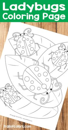 Do You Have A Kid At Home Who Likes Bugs Then This Ladybugs Coloring Page