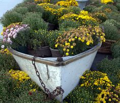 row boat being reused as a planter Essex, MA