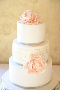 """Pretty blush pink and silver accented wedding cake. I could see this with a blush colour wedding dress and pastel colour succulent wedding bouquet, the bridesmaids in silvery grey. Whooops I just designed a wedding colour theme around a cake!"" #blush #wedding #cake Kerrie G, Custom Bridal Jeweller, http://www.weddingandgems.co.uk"