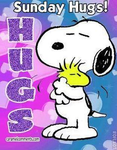 Snoopy gives Woodstock a hug Gifs Snoopy, Images Snoopy, Snoopy Hug, Snoopy Pictures, Snoopy Quotes, Snoopy And Woodstock, Peanuts Quotes, Hug Images, Friday Pictures