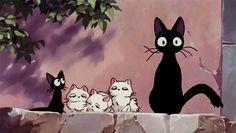 anime aesthetic, scenery, food, etc. Hayao Miyazaki, Studio Ghibli Films, Art Studio Ghibli, Personajes Studio Ghibli, Gato Gif, Kiki Delivery, Kiki's Delivery Service, Photo Chat, Anime Cat