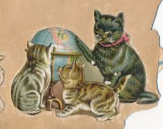 Prints and Photographs, Special Collections, Library of Virginia. cat pet Victorian scrapbook die cut vintage clip art free for personal use Vintage Clip, Animal Photography, Ephemera, Virginia, Photographs, Scrapbooking, Clip Art, Collections, Victorian
