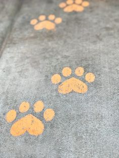 "Guide guests to the party entrance with the kitty paw stencil available in the Black Cat Halloween Party Package on Etsy. ""Black Cat Halloween Party Reveal"" on Halfpint Design - Halloween party ideas, kitty cat party, kids party, cat party treats"