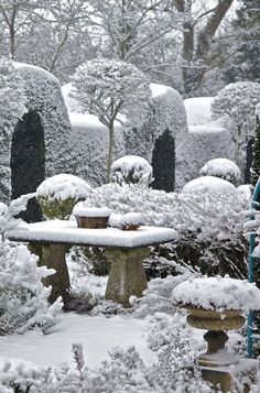 Topiary in the snow
