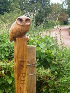 Oak wood Birds Sculptures or statue by artist Nigel Sardeson titled: 'Little Owl (Small Carved Wood on Post carvings/statues/statuettes)'