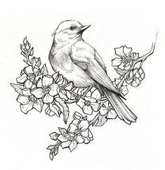 птица на ветке с цветами