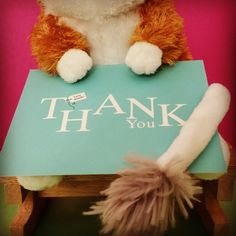 Thank you for 100 instagram followers!   (www.adorableindustries.com) #adorableindustries #adorable #socute #toocute #cute #cuteness #cutenessoverload #thankyou #thankyousomuch #thankyouverymuch #tytyty #muchappreciated #appreciated #feelloved #ifeelloved #plushies #plushtoys #stuffedanimals #stuffetoys #cuteplushies #kangaroorat #animals #instagram #instagramfollowers #100followers #100 #instagrammers #loved