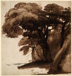 Spencer Alley: Portraits of trees by Claude Lorrain, 17th century