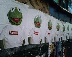 Terry Richardson Kermit X Supreme