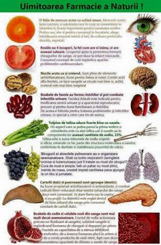 Medicinal Plants, Health Tips, Healthy Lifestyle, Hair Care, Healthy Recipes, Healthy Food, Health Fitness, Herbs, Smoothie