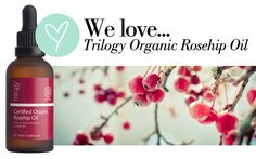Review Trilogy Rosehip Oil - Ever wonder if there's an affordable, completely natural and organic beauty product that can keep your wrinkles at bay?