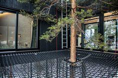 une cabane de luxe dans les arbres dune forêt de Laponie pour admirer les aurores boréales  2Tout2Rien