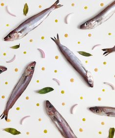 mairas plate selector eating patterns vega hernando
