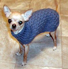 Descarga inmediata - PDF Knitting Pattern Basketweave Dog Sweater - Chihuahua Min Pin Yorkie Puppy - Things to wear - Abrigos para Perros Dog Sweater Pattern, Crochet Dog Sweater, Yorkshire Terrier, Pet Sweaters, Yorkie Puppy, Dog Coats, Little Dogs, Small Dogs, Fur Babies