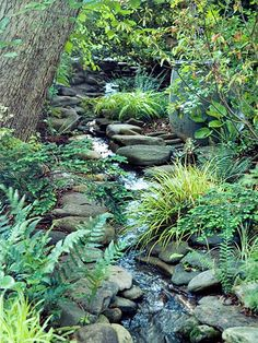 Any property with a little slope can have a soothing babbling brook. A simple recirculating pump, stones, liner, plants and elbow grease are all it takes to make garden magic.