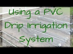 A PVC Drip Irrigation system to water your garden is a great way to go! Easy to assemble and water wise, these systems make watering your garden a breeze! Drip Irrigation System, Drip System, Garden Watering System, Veg Garden, Water Wise, Planting Flowers, Flower Gardening, Organic Gardening, Helpful Hints