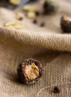 "Banana Chocolate Protein Truffles Stuffed with Peanut Butter!! Yum! To make vegan, simply use vegan chocolate! description... ""This chocolate truffle recipe is quick and easy, and has a has a few surprise ingredients to make them healthy! It has a banana chip coating, and a peanut butter filling."""