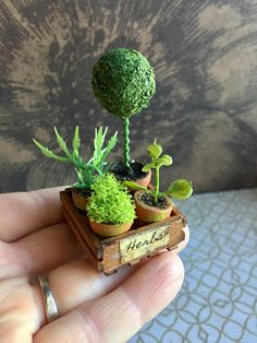 This miniature crate with three pots of herbs and a pretty topiary plant is the perfect addition to your dollhouse garden or fairy garden display. The tiny crate has been stained, distressed and labeled. The hand painted pots have been aged and are filled with moss, faux greens and