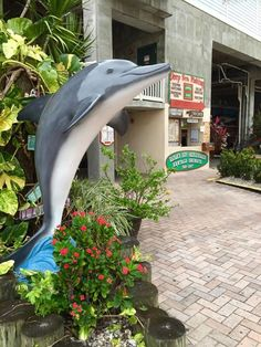 """Schnoz"" dolphin   Owner:  Hubbard's Marina, Artist:  Steven Brancati of Ocean Creations.  Location:  John's Pass, Madeira Beach.  #ClearwatersDolphins"