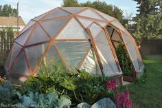 Find out how to build a geodome greenhouse right in your backyard.