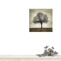 photography canvas canvas print Canvas Gallery by PhotographyDream