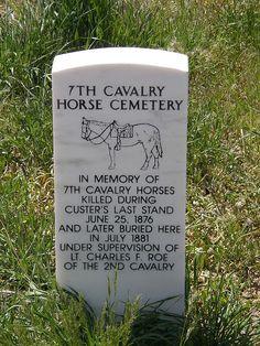 Horse Grave at Little Bighorn by jimbowen0306, via Flickr