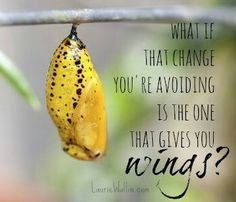 What if the change you're avoiding is the one that gives you wings?