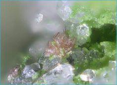 Mineralgalerie A Natural Phenomena, Earth, Sky, Minerals, Heaven, Heavens, Mother Goddess, World, The World