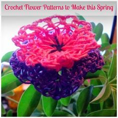 Crochet Flower Patterns to Make this Spring