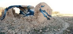 Flowing Swarms of Animals and Other Beasts Painted on Urban Walls by 'Pantonio'