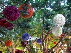 Flower balls and tree lights!