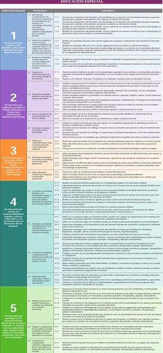 Perfil, Parámetros e indicadores Educación Especial