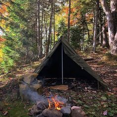 Survival Tips And Strategies For bushcraft camping Survival Shelter, Survival Food, Wilderness Survival, Camping Survival, Outdoor Survival, Survival Prepping, Survival Skills, Camping And Hiking, Camping Life