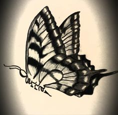 Butterfly with name drawing Tattoos, Name Drawings, Tatoos, Inspiration, Art Drawings, Drawings, Maple Leaf Tattoo, Art