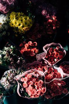 (via Mini Roses   Flickr - Photo Sharing!)