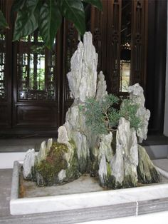 Ferns Garden, Bonsai Garden, Garden Art, Bonsai Forest, Asian Artwork, Garden Railroad, Concrete Leaves, Bonsai Styles, Waterfall Fountain