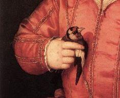 Agnolo Bronzino, Giovanni de' Medici: il cardellino