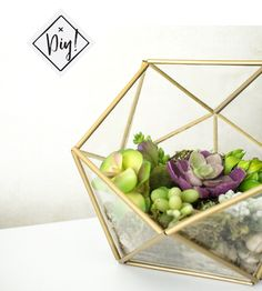 DIY faceted terrarium craft do it yourself Du Petit Doux géométrique artisanat
