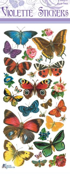 P19-Butterfly Forest