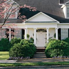 Keep your boxwoods growing with these basic tips.