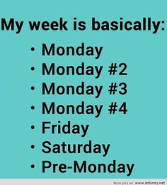 why does everything have to come back to Monday again?