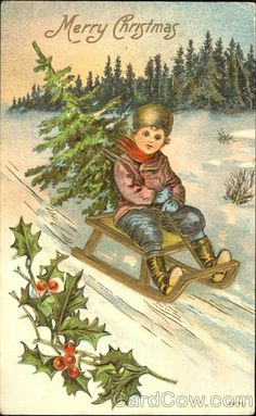Boy on a sled with a tree