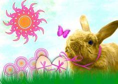 Descubra aqui o significa de ser o coelho o animal escolhido para entregar os ovos de Páscoa de chocolate!