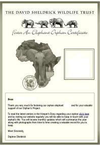 Adopt an Elephant Orphan - Foster an Elephant, Rhino or Giraffe Orphan