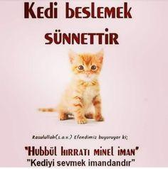 Muhammed Sav, Duaa Islam, Sufi, Quotations, Quotes, Poster, Quote, Shut Up Quotes, Shut Up Quotes