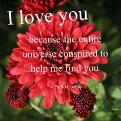 I Love You Because ... #valentines #quotes